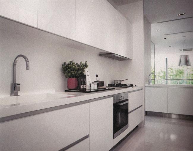 Singapore Flat Hopper